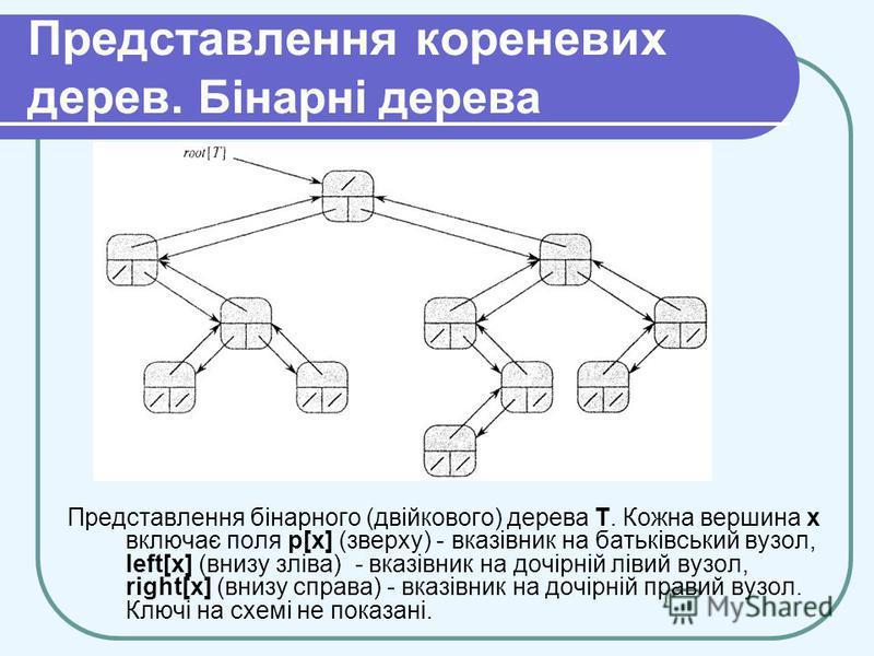 Представлення кореневих дерев. Бінарні дерева Представлення бінарного (двійкового) дерева Т. Кожна вершина х включає поля р[х] (зверху) - вказівник на батьківський вузол, left[x] (внизу зліва) - вказівник на дочірній лівий вузол, right[x] (внизу спра