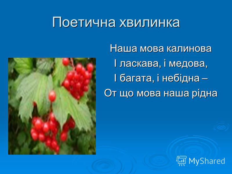 Поетична хвилинка Наша мова калинова І ласкава, і медова, І багата, і небідна – От що мова наша рідна