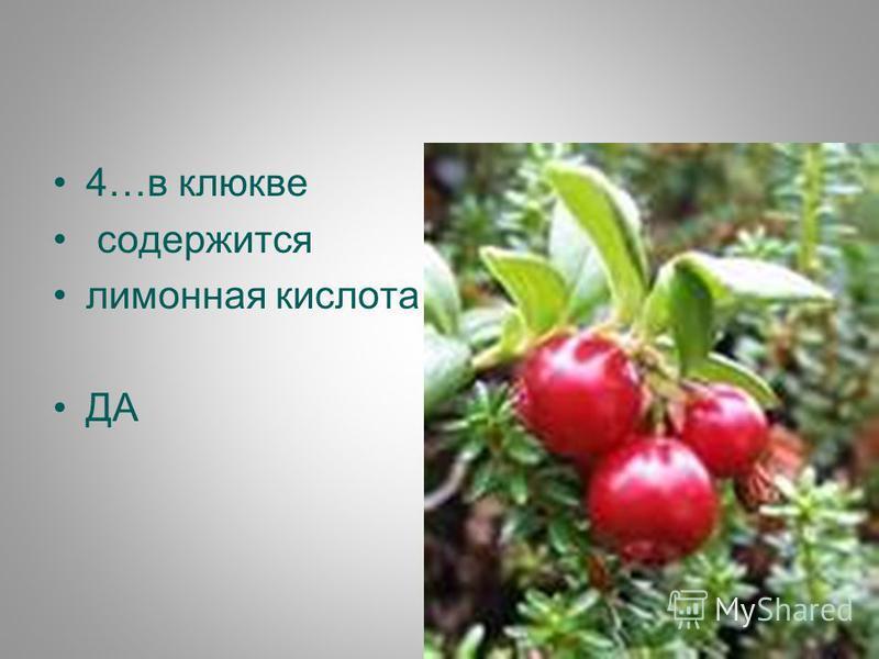 4…в клюкве содержится лимонная кислота ДА