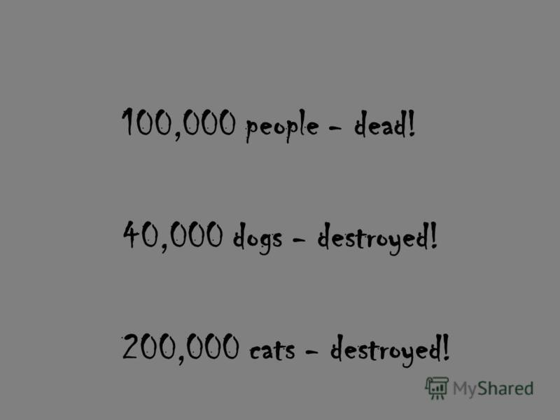 100,000 people - dead! 40,000 dogs - destroyed! 200,000 cats - destroyed!