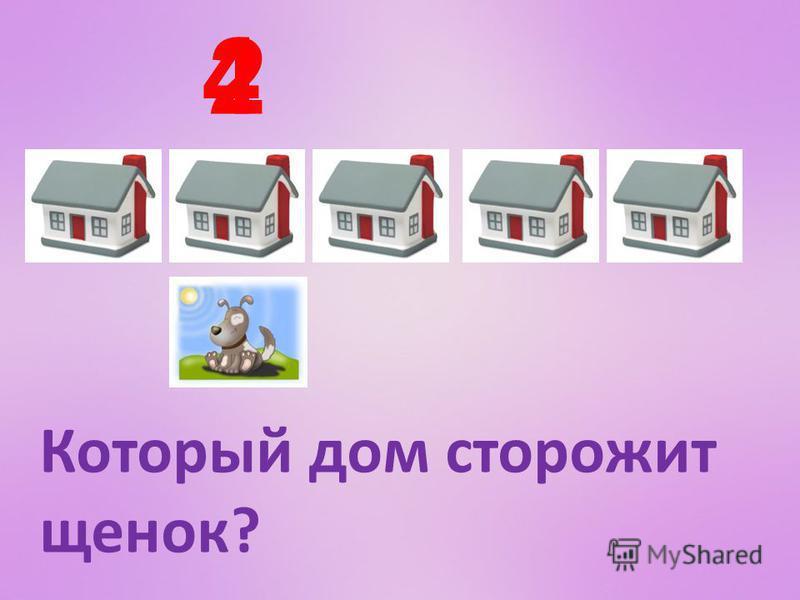Который дом сторожит щенок? 24