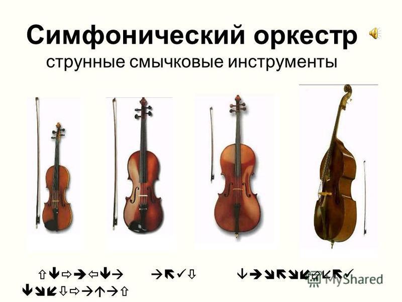 Симфонический оркестр струнные смычковые инструменты скрипка альт виолончель контрабас