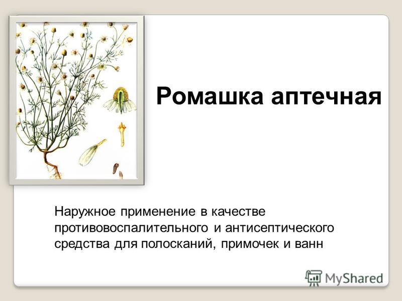 Крапива Настой листьев ускоряет заживление ран.