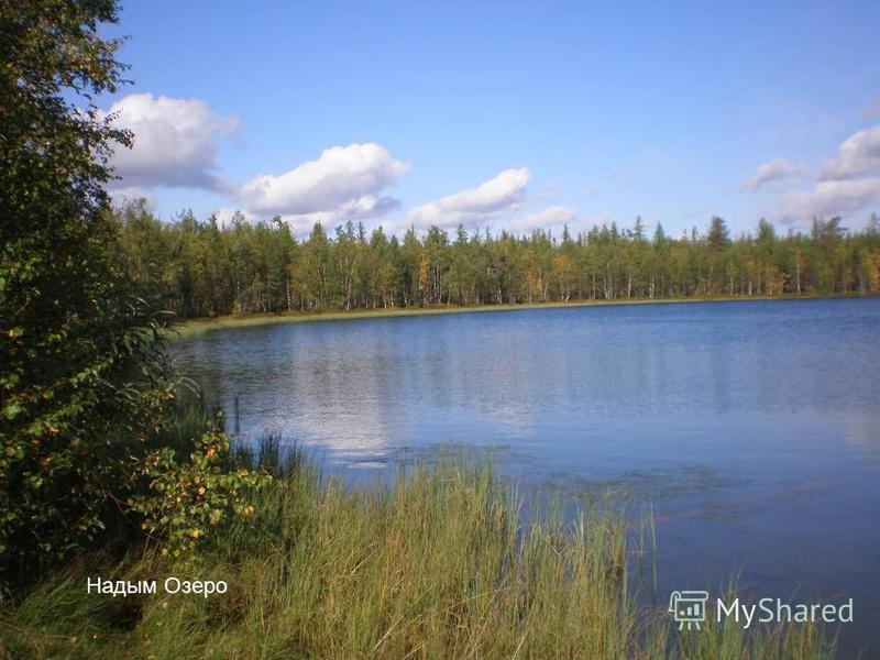 Надым Озеро