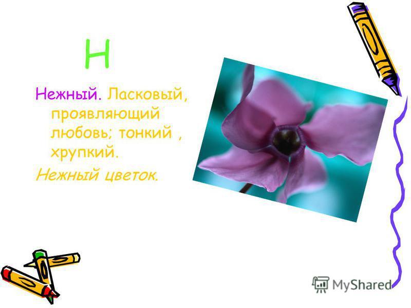 Н Нежный. Ласковый, проявляющий любовь; тонкий, хрупкий. Нежный цветок.