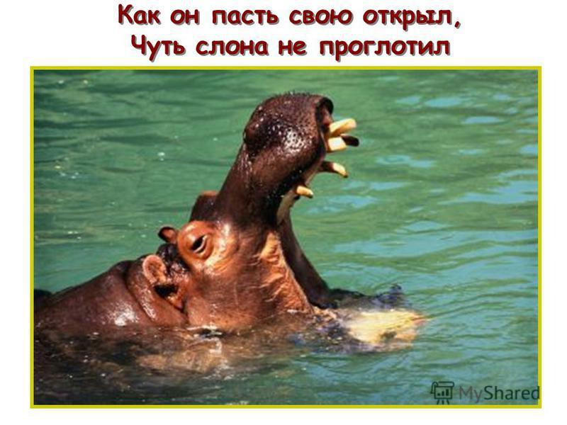 Как он пасть свою открыл, Чуть слона не проглотил п п