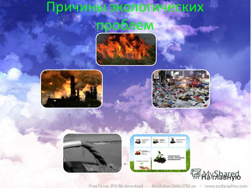 Причины экологических проблем На главную