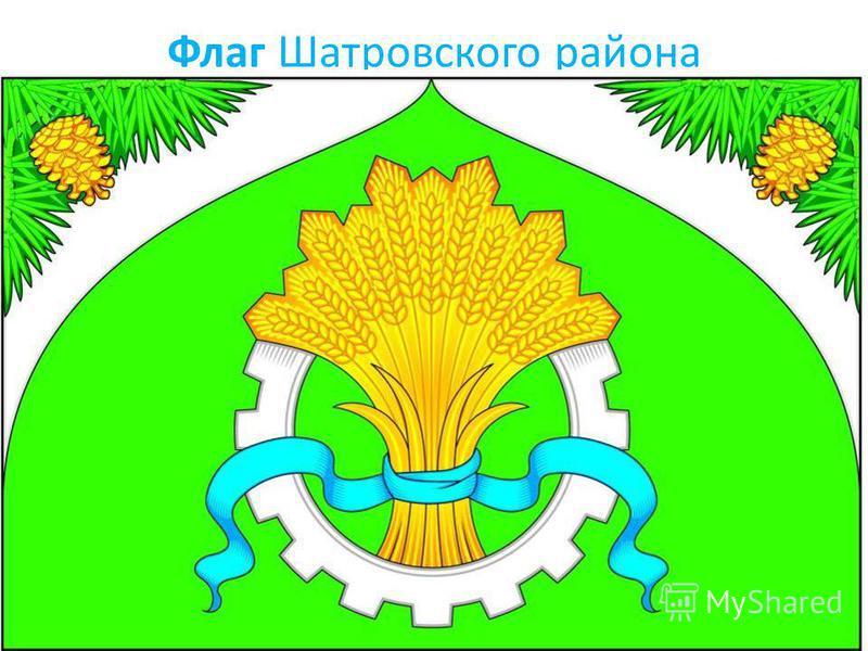 Флаг Шатровского района