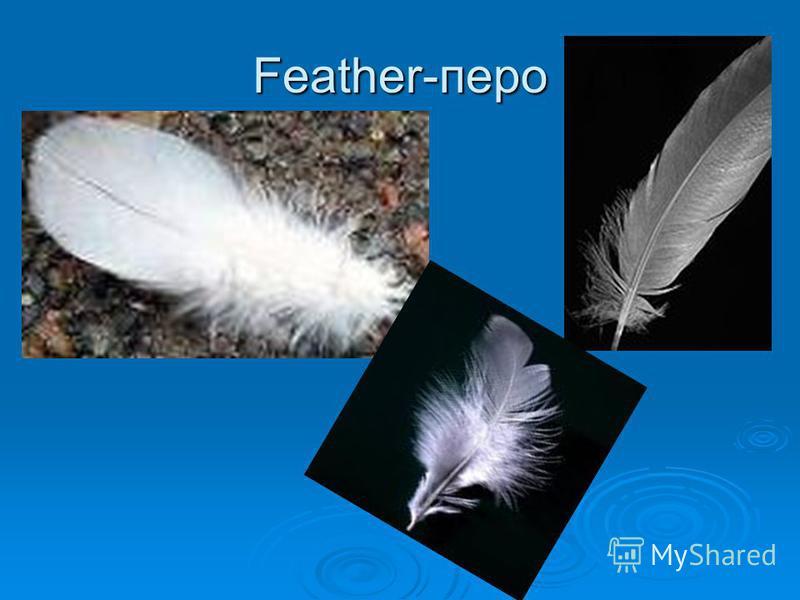 Feather-перо