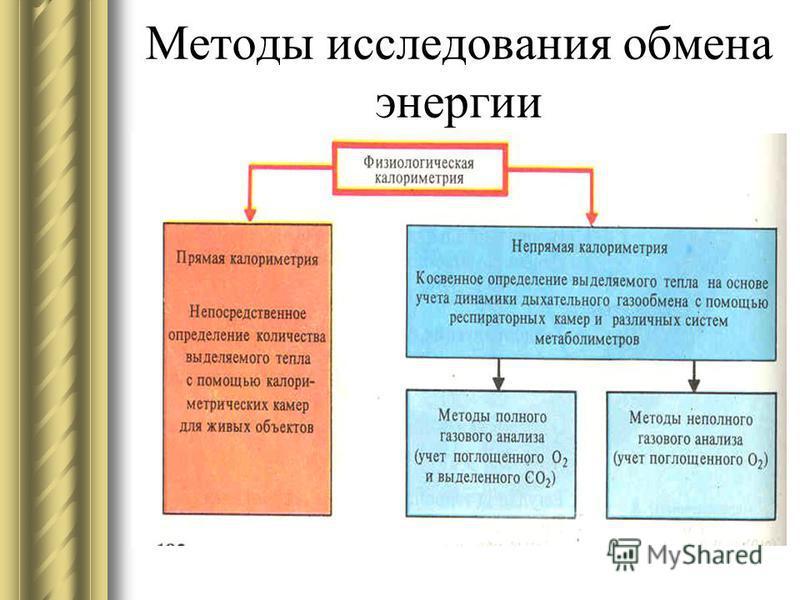 Общее представление об обмене веществ и энергии