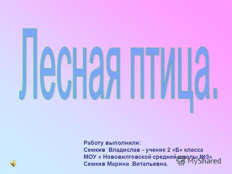 Работу выполнили: Семкив Владислав - ученик 2 «Б» класса МОУ « Нововилговской средней школы 3» Семкив Марина.Витальевна.