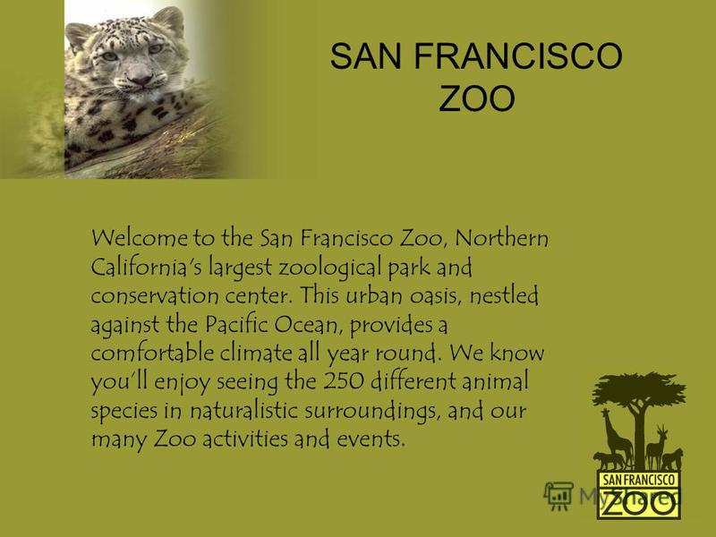 Welcome to the San Francisco Zoo, Northern California's largest zoological park and conservation center. This urban oasis, nestled against the Pacific Ocean, provides a comfortable climate all year round. We know youll enjoy seeing the 250 different