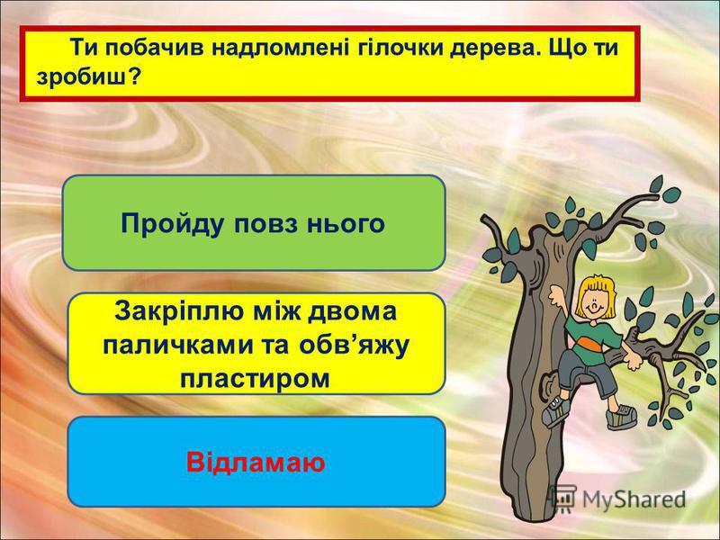 Ти побачив надломлені гілочки дерева. Що ти зробиш? Пройду повз нього Закріплю між двома паличками та обвяжу пластиром Відламаю