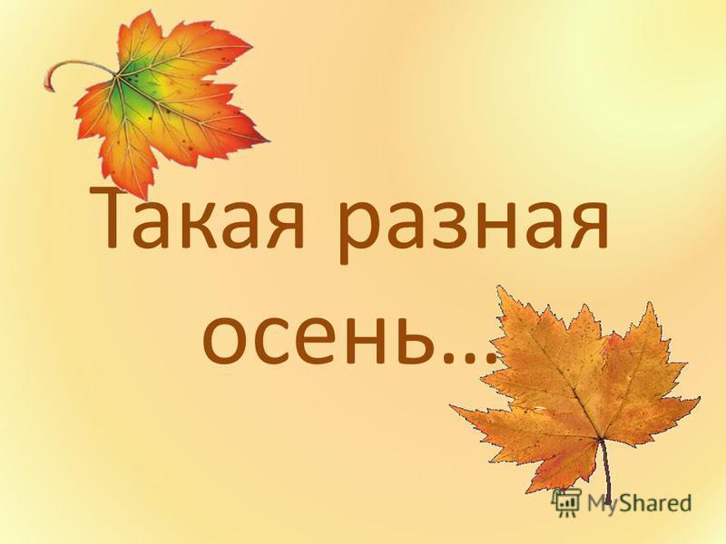 Такая разная осень…