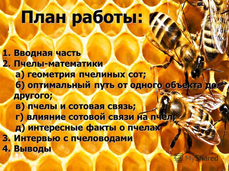 План работы: 1. Вводная часть 2.Пчелы-математики а) геометрия пчелиных сот; а) геометрия пчелиных сот; б) оптимальный путь от одного объекта до другого; б) оптимальный путь от одного объекта до другого; в) пчелы и сотовая связь; в) пчелы и сотовая св