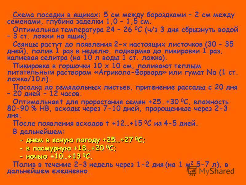 Схема посадки в ящиках: 5 см между бороздками – 2 см между семенами, глубина заделки 1,0 – 1,5 см. Оптимальная температура 24 – 26 0 С (ч/з 3 дня сбрызнуть водой – 3 ст. ложки на ящик). Сеянцы растут до появления 2-х настоящих листочков (30 – 35 дней