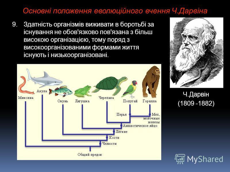 Основні положення еволюційного вчення Ч.Дарвіна Ч.Дарвін (1809 -1882) 9.Здатність організмів виживати в боротьбі за існування не обов'язково пов'язана з більш високою організацією, тому поряд з високоорганізованими формами життя існують і низькоорган