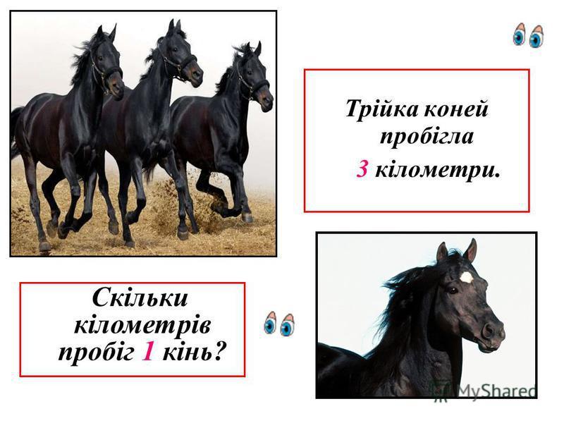 Трійка коней пробігла 3 кілометри. Скільки кілометрів пробіг 1 кінь?