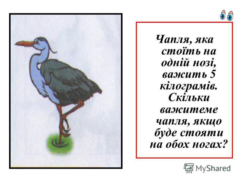 Чапля, яка стоїть на одній нозі, важить 5 кілограмів. Скільки важитеме чапля, якщо буде стояти на обох ногах?