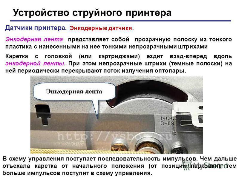 Устройство струйного принтера Датчики принтера. Энкодерные датчики. Энкодерная лента представляет собой прозрачную полоску из тонкого пластика с нанесенными на нее тонкими непрозрачными штрихами Каретка с головкой (или картриджами) ездит взад-вперед