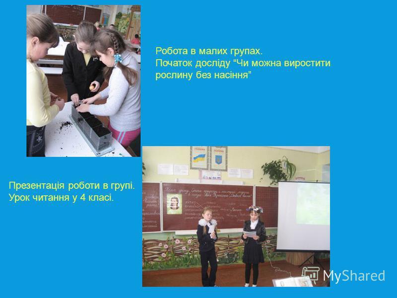Робота в малих групах. Початок досліду Чи можна виростити рослину без насіння Презентація роботи в групі. Урок читання у 4 класі.