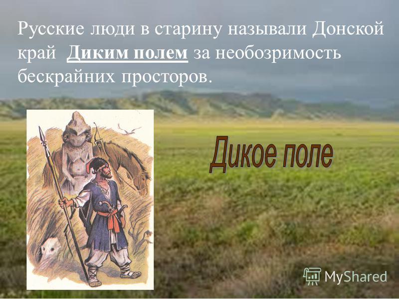 Русские люди в старину называли Донской край Диким полем за необозримость бескрайних просторов.