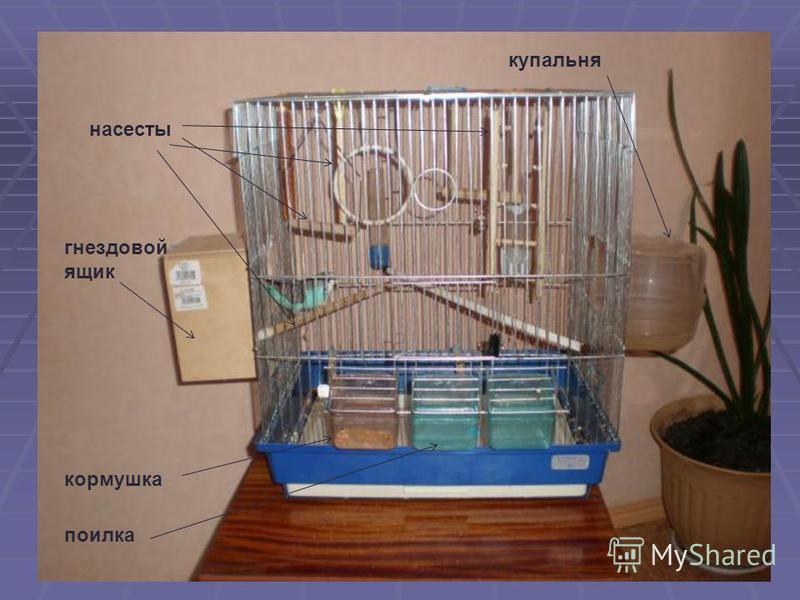 купальня поилка кормушка насесты гнездовой ящик