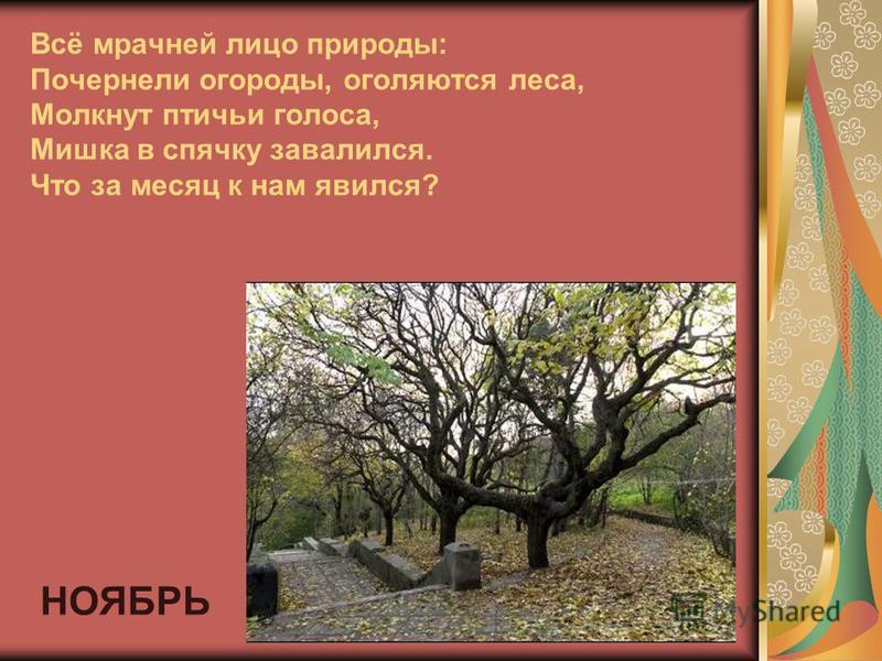 Всё мрачней лицо природы: Почернели огороды, оголяются леса, Молкнут птичьи голоса, Мишка в спячку завалился. Что за месяц к нам явился? НОЯБРЬ