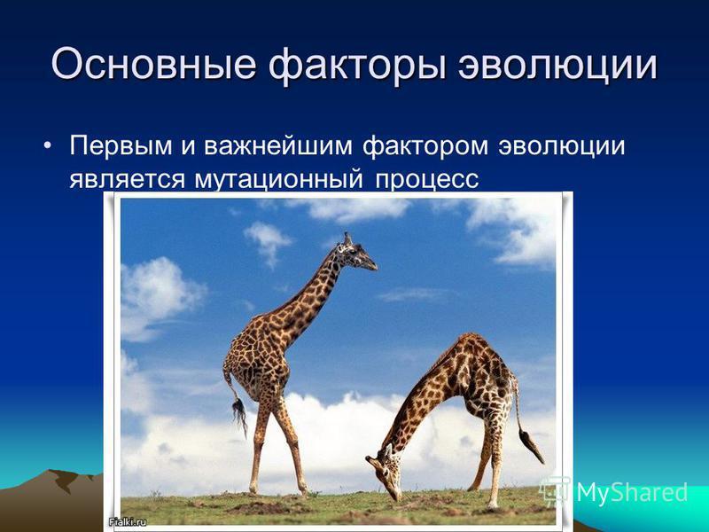 Основные факторы эволюции Первым и важнейшим фактором эволюции является мутационный процесс