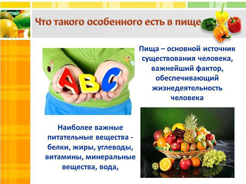Пища – основной источник существования человека, важнейший фактор, обеспечивающий жизнедеятельность человека Наиболее важные питательные вещества - белки, жиры, углеводы, витамины, минеральные вещества, вода,
