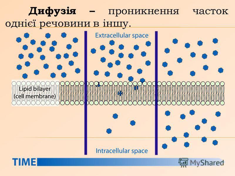 Дифузія – проникнення часток однієї речовини в іншу.