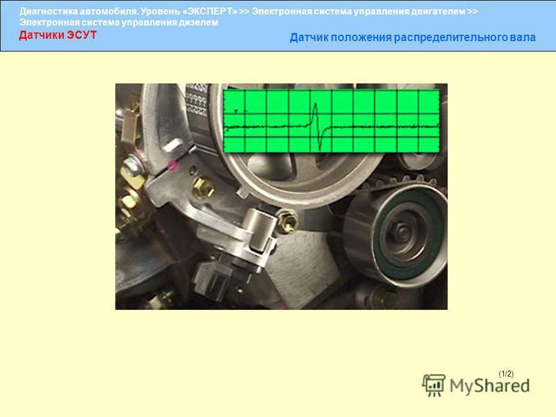 Диагностика автомобиля. Уровень «ЭКСПЕРТ» >> Электронная система управления двигателем >> Электронная система управления дизелем Датчики ЭСУТ Датчик положения распределительного вала (1/2)