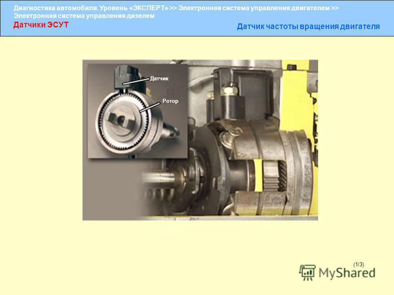 Диагностика автомобиля. Уровень «ЭКСПЕРТ» >> Электронная система управления двигателем >> Электронная система управления дизелем Датчики ЭСУТ Датчик частоты вращения двигателя (1/3) Датчик Ротор