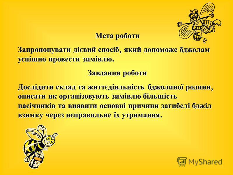 Мета роботи Запропонувати дієвий спосіб, який допоможе бджолам успішно провести зимівлю. Завдання роботи Дослідити склад та життєдіяльність бджолиної родини, описати як організовують зимівлю більшість пасічників та виявити основні причини загибелі бд