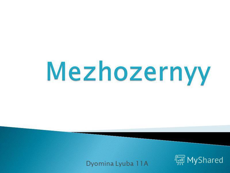 Dyomina Lyuba 11A