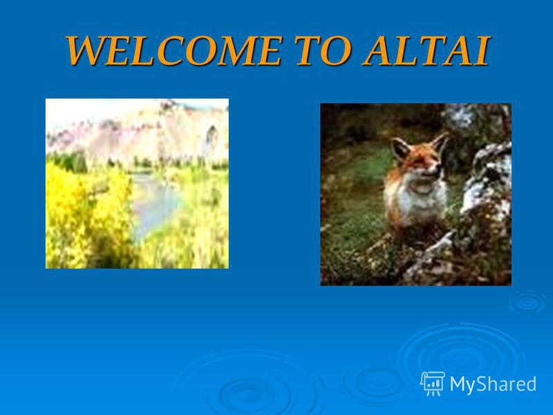 WELCOME TO ALTAI