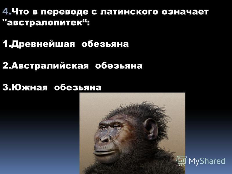 4. Что в переводе с латинского означает австралопитек: 1. Древнейшая обезьяна 2. Австралийская обезьяна 3. Южная обезьяна