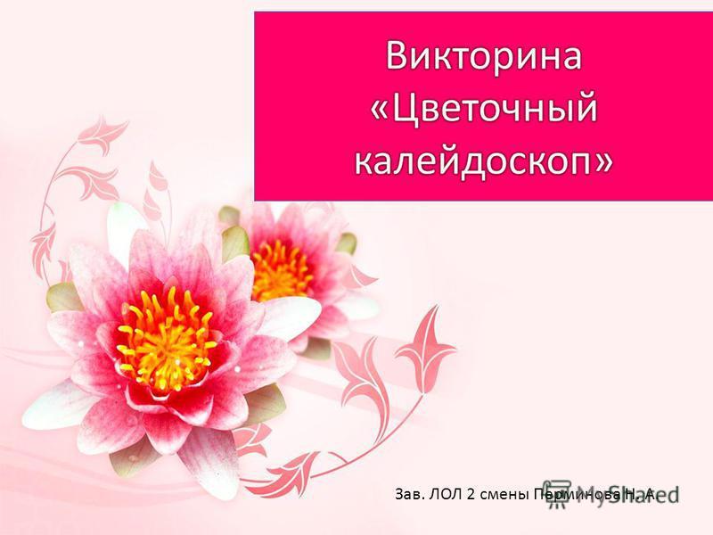 Зав. ЛОЛ 2 смены Перминова Н. А.