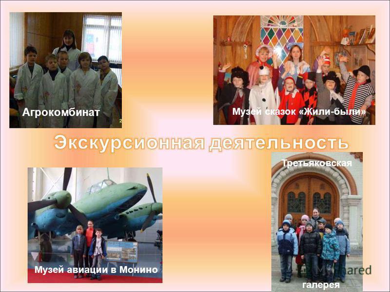 Агрокомбинат Музей сказок «Жили-были» Музей авиации в Монино Третьяковская галерея