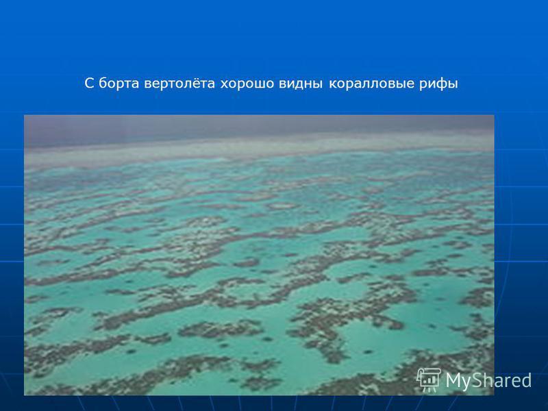 С борта вертолёта хорошо видны коралловые рифы