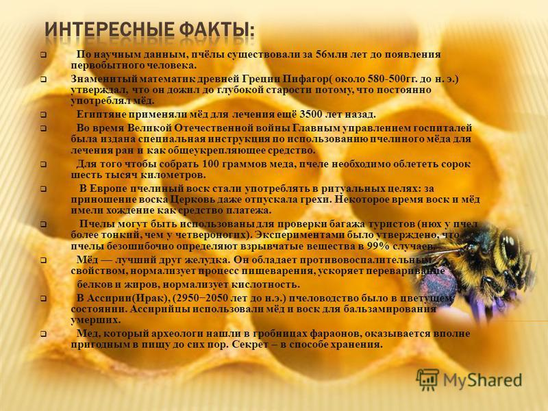По научным данным, пчёлы существовали за 56 млн лет до появления первобытного человека. Знаменитый математик древней Греции Пифагор( около 580-500 гг. до н. э.) утверждал, что он дожил до глубокой старости потому, что постоянно употреблял мёд. Египтя