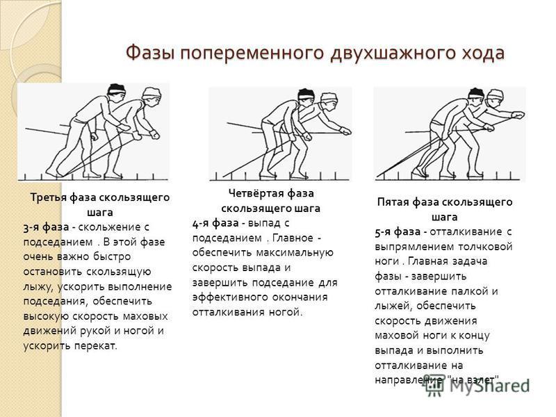 Фазы попеременного двухшажного хода Третья фаза скользящего шага 3-я фаза - скольжение с подседанием. В этой фазе очень важно быстро остановить скользящую лыжу, ускорить выполнение подседания, обеспечить высокую скорость маховых движений рукой и ного