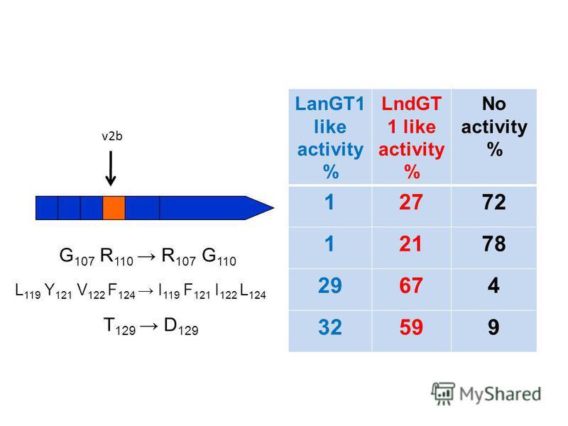 LanGT1 like activity % LndGT 1 like activity % No activity % 12772 12178 29674 32599 G 107 R 110 R 107 G 110 L 119 Y 121 V 122 F 124 I 119 F 121 I 122 L 124 T 129 D 129 v2b