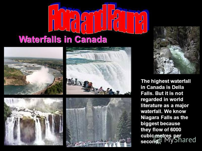 Waterfalls in Canada The highest waterfall in Canada is Della Falls. But it is not regarded in world literature as a major waterfall. We know Niagara Falls as the biggest because they flow of 6000 cubic metres per second.