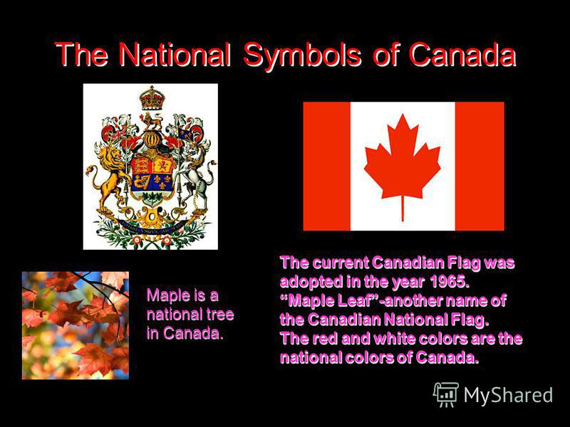The National Symbols of Canada The current Canadian Flag was adopted in the year 1965. Maple Leaf-another name of the Canadian National Flag. The red and white colors are the national colors of Canada. The current Canadian Flag was adopted in the yea