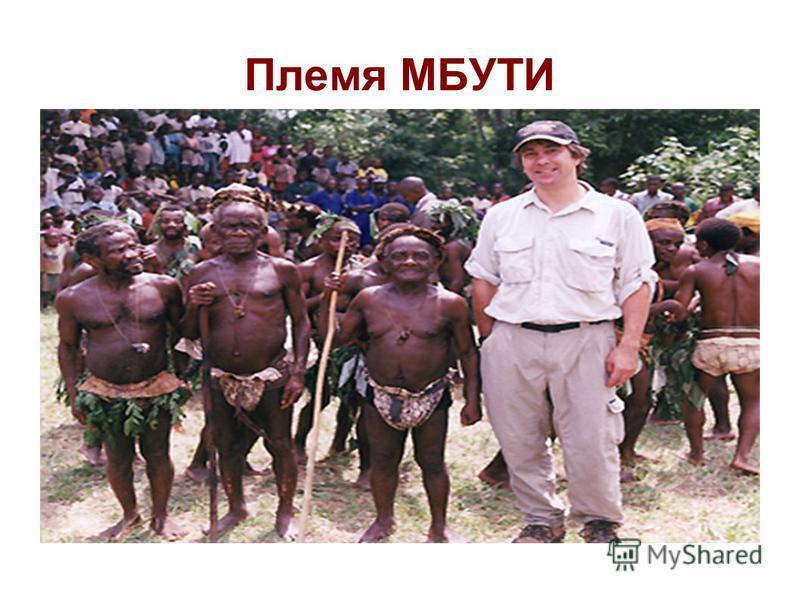 Племя МБУТИ