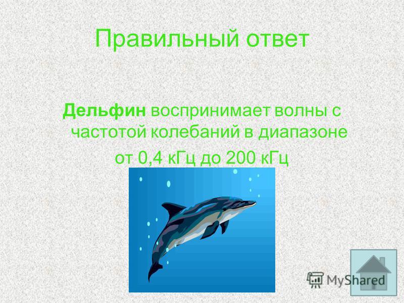 Правильный ответ Дельфин воспринимает волны с частотой колебаний в диапазоне от 0,4 к Гц до 200 к Гц