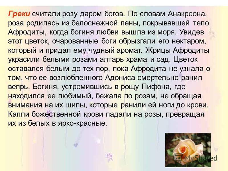 В Персии настолько почитали розу, что даже сама страна получила название Гюлистан – «Страна Роз». Поэт Хафиз воспевал розу в своих стихах. В память об этом, после его смерти, он был похоронен в местечке Кессер, представляющем самый обширный на всем с