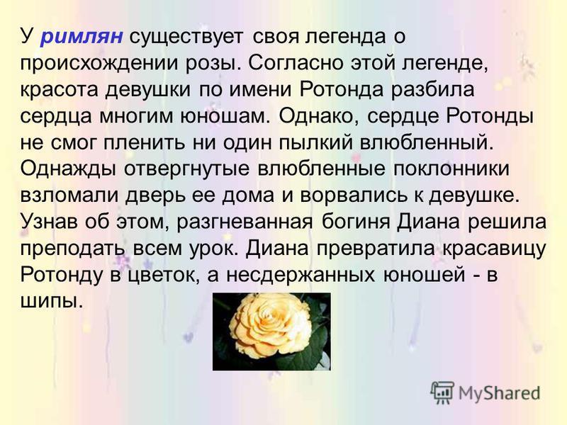 Роза, как украшение российских садов стала появляться лишь при Петре I и особенно при императрице Екатерине, которая, прогуливаясь по саду, заметила великолепную только что распустившуюся розу, и, желая поднести ее на следующий день в подарок одному