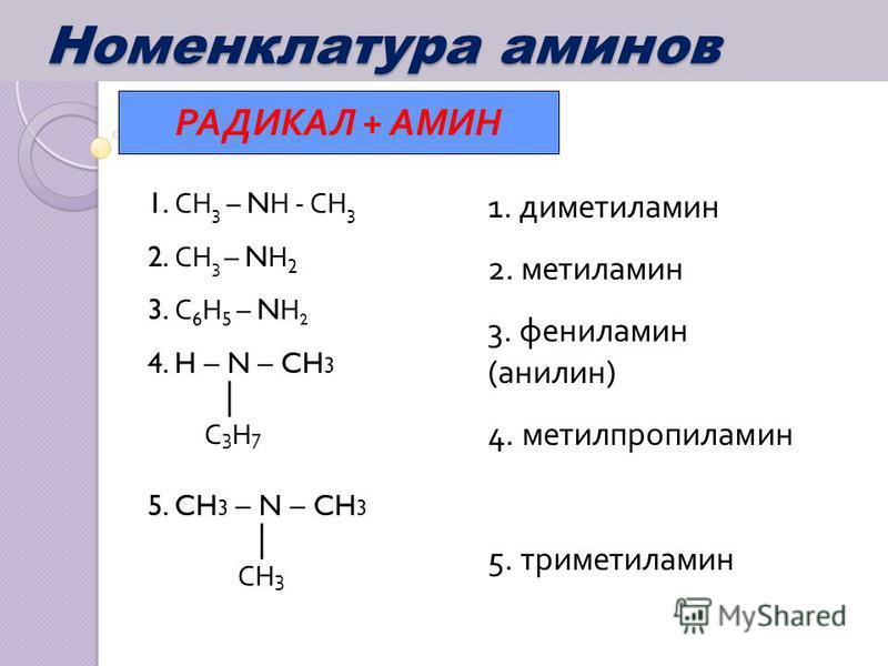 Номенклатура аминов Номенклатура аминов РАДИКАЛ + АМИН 1. СН 3 – N Н - СН 3 2. СН 3 – N Н 2 3. С 6 Н 5 – N Н 2 4. H – N – CH 3 С 3 Н 7 5. CH 3 – N – CH 3 СН 3 1. диметиламин 2. метиламин 3. фениламин (анилин) 4. метилпропиламин 5. триметиламин
